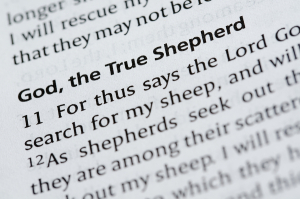 a passage in a Catholic bible about God being a Shepherd.